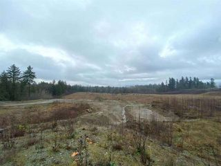 Photo 3: 2676 ROSS Road in Abbotsford: Aberdeen Land for sale : MLS®# R2424523