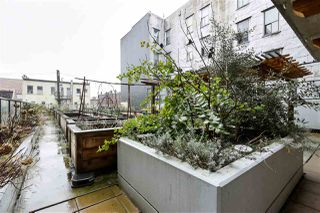 """Photo 10: 203 138 E HASTINGS Street in Vancouver: Downtown VE Condo for sale in """"Sequel 138"""" (Vancouver East)  : MLS®# R2432623"""