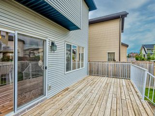 Photo 40: 29 SILVERADO SADDLE Heights SW in Calgary: Silverado Detached for sale : MLS®# A1009131