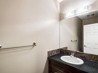 Photo 17: 29 SILVERADO SADDLE Heights SW in Calgary: Silverado Detached for sale : MLS®# A1009131