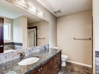 Photo 28: 29 SILVERADO SADDLE Heights SW in Calgary: Silverado Detached for sale : MLS®# A1009131