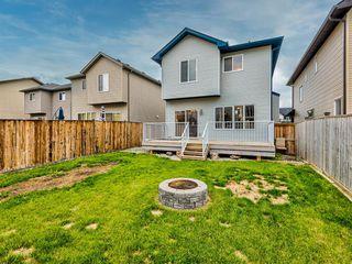 Photo 43: 29 SILVERADO SADDLE Heights SW in Calgary: Silverado Detached for sale : MLS®# A1009131