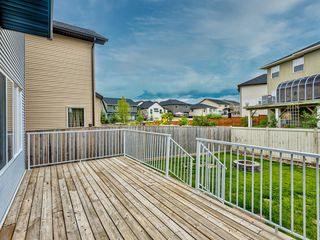 Photo 41: 29 SILVERADO SADDLE Heights SW in Calgary: Silverado Detached for sale : MLS®# A1009131
