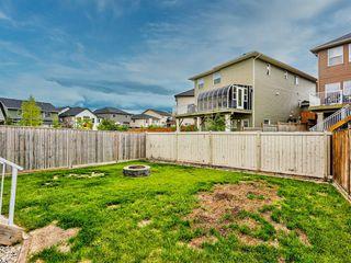 Photo 44: 29 SILVERADO SADDLE Heights SW in Calgary: Silverado Detached for sale : MLS®# A1009131