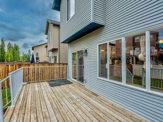 Photo 39: 29 SILVERADO SADDLE Heights SW in Calgary: Silverado Detached for sale : MLS®# A1009131