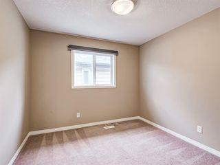 Photo 34: 29 SILVERADO SADDLE Heights SW in Calgary: Silverado Detached for sale : MLS®# A1009131