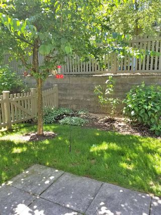 """Photo 11: 54 15152 62A Avenue in Surrey: Sullivan Station Townhouse for sale in """"UPLANDS"""" : MLS®# R2519613"""