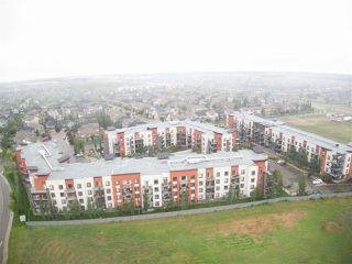 Photo 27: 214 304 AMBLESIDE Link in Edmonton: Zone 56 Condo for sale : MLS®# E4166388