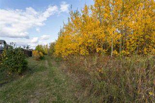 Photo 6: 1638 MALONE Way in Edmonton: Zone 14 House for sale : MLS®# E4175221
