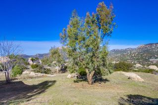 Photo 23: JAMUL House for sale : 3 bedrooms : 2091 Via Laura