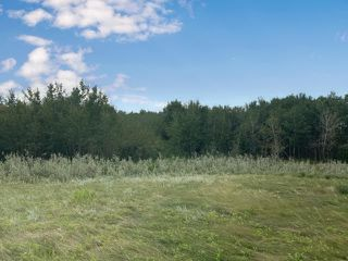 Photo 4:  in Hardisty: Land Only for sale (MD of Wainwright)  : MLS®# A1029195