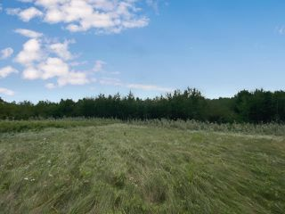 Photo 6:  in Hardisty: Land Only for sale (MD of Wainwright)  : MLS®# A1029195