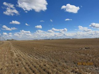 Photo 3: Southeast Twp 560 RR 252: Rural Sturgeon County Rural Land/Vacant Lot for sale : MLS®# E4223208