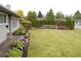 "Photo 2: 1397 COTTONWOOD in North Vancouver: Norgate House for sale in ""Norgate"" : MLS®# V864616"