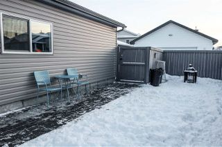 Photo 20: 103 BRINTNELL Boulevard in Edmonton: Zone 03 House for sale : MLS®# E4221027