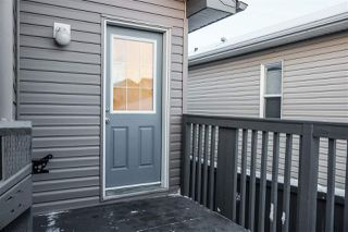 Photo 28: 103 BRINTNELL Boulevard in Edmonton: Zone 03 House for sale : MLS®# E4221027