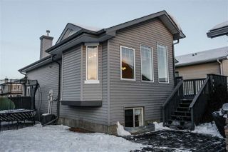 Photo 22: 103 BRINTNELL Boulevard in Edmonton: Zone 03 House for sale : MLS®# E4221027