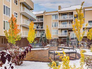 Photo 22: 306 3717 42 Street NW in Calgary: Varsity Apartment for sale : MLS®# C4271050