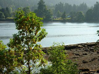 Photo 3: LT 13 Weathers Way in : Isl Mudge Island Land for sale (Islands)  : MLS®# 725673