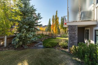 Photo 46: 71 ELMONT Rise SW in Calgary: Springbank Hill Detached for sale : MLS®# A1047865