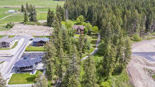 Photo 45: 3960 Northeast 20 Street in Salmon Arm: UPPER RAVEN House for sale (NE Salmon Arm)  : MLS®# 10205011