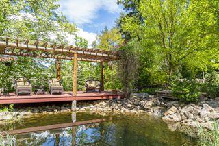 Photo 125: 3960 Northeast 20 Street in Salmon Arm: UPPER RAVEN House for sale (NE Salmon Arm)  : MLS®# 10205011