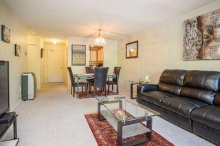 "Photo 9: 108 7300 MOFFATT Road in Richmond: Brighouse South Condo for sale in ""ASHFORD PLACE"" : MLS®# R2459228"