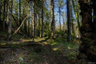 Photo 4: 10910 Greenpark Dr in : NS Swartz Bay Land for sale (North Saanich)  : MLS®# 853881