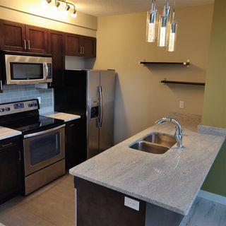 Photo 4: 503 1238 WINDERMERE Way SW in Edmonton: Zone 56 Condo for sale : MLS®# E4220916