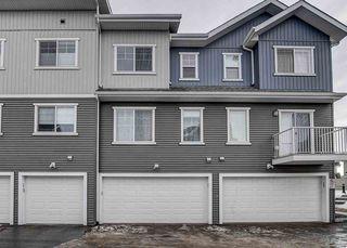 Photo 30: 31 7385 Edgemont Way NW in Edmonton: Zone 57 Townhouse for sale : MLS®# E4170127