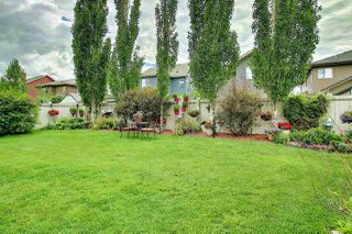 Photo 41: 2550 CAMERON RAVINE Landing in Edmonton: Zone 20 House for sale : MLS®# E4201882