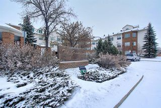 Photo 34: 306 1920 14 Avenue NE in Calgary: Mayland Heights Apartment for sale : MLS®# A1050176