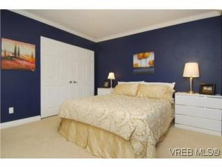 Photo 9: 4042 Hessington Place in VICTORIA: SE Arbutus Single Family Detached for sale (Saanich East)  : MLS®# 532222