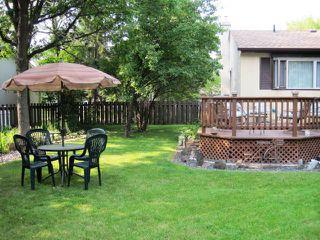 Photo 12: 616 PATRICIA Avenue in WINNIPEG: Fort Garry / Whyte Ridge / St Norbert Residential for sale (South Winnipeg)  : MLS®# 1016789