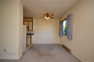 Photo 10: 304 1571 Mortimer St in Saanich: SE Mt Tolmie Condo for sale (Saanich East)  : MLS®# 845262