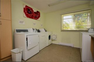 Photo 4: 304 1571 Mortimer St in Saanich: SE Mt Tolmie Condo for sale (Saanich East)  : MLS®# 845262