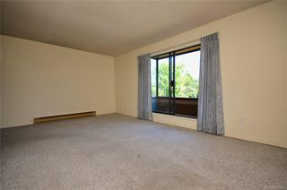 Photo 11: 304 1571 Mortimer St in Saanich: SE Mt Tolmie Condo Apartment for sale (Saanich East)  : MLS®# 845262