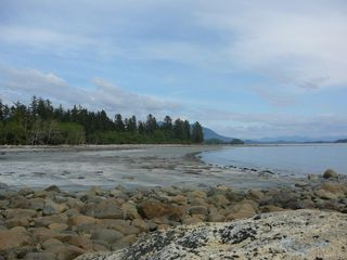 Photo 7: 1182 2nd Ave in : PA Salmon Beach Land for sale (Port Alberni)  : MLS®# 850512