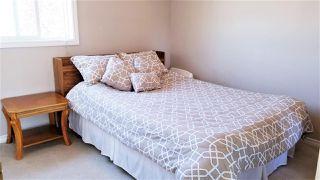 Photo 18: 3513 25 Street in Edmonton: Zone 30 House for sale : MLS®# E4216901