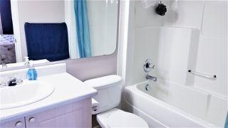 Photo 16: 3513 25 Street in Edmonton: Zone 30 House for sale : MLS®# E4216901