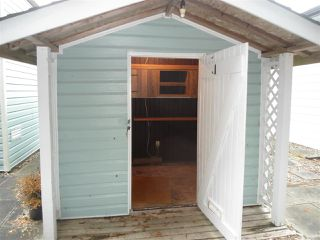 Photo 13: 12 2315 198 Street in Langley: Brookswood Langley Manufactured Home for sale : MLS®# R2389863