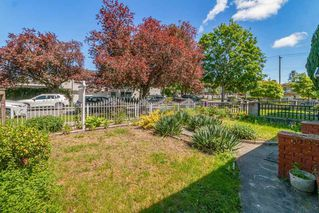 Photo 20: 380 E 58TH Avenue in Vancouver: South Vancouver House for sale (Vancouver East)  : MLS®# R2455679