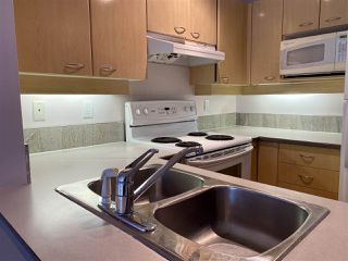 Photo 10: 313 2288 MARSTRAND AVENUE in Vancouver: Kitsilano Condo for sale (Vancouver West)  : MLS®# R2454175