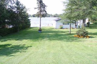 Photo 6: 33 Robinson Avenue in Kawartha L: House (Bungalow) for sale (X22: ARGYLE)  : MLS®# X1550900