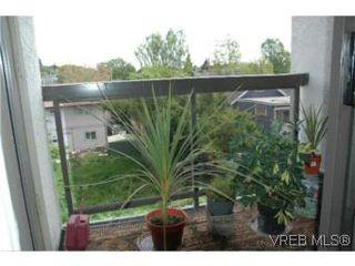 Photo 6: 307 2757 Quadra St in VICTORIA: Vi Hillside Condo Apartment for sale (Victoria)  : MLS®# 503752