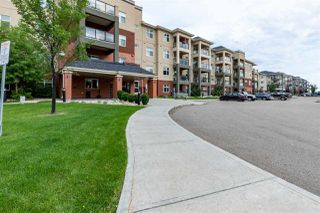 Photo 1: 340 7825 71 Street in Edmonton: Zone 17 Condo for sale : MLS®# E4169139