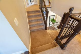 Photo 14: 4127 CHARLES Link in Edmonton: Zone 55 House for sale : MLS®# E4177169