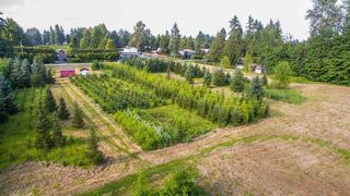 Photo 9: 24458 50 Avenue in Langley: Salmon River Land for sale : MLS®# R2465887