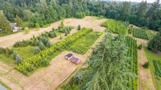 Photo 5: 24458 50 Avenue in Langley: Salmon River Land for sale : MLS®# R2465887
