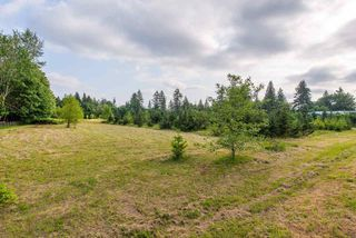 Photo 4: 24458 50 Avenue in Langley: Salmon River Land for sale : MLS®# R2465887